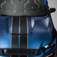 Thumb shelby gt350r wallpaper 10506314